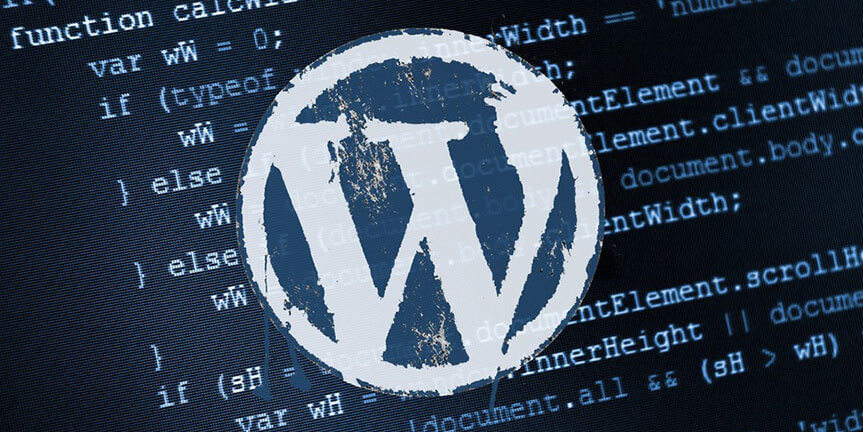 Tuyển dụng WordPress developer - Cùng tham gia môi trường làm việc thoải mái nhất VN