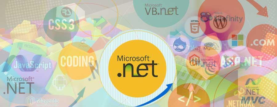 Tuyển dụng .NET developer - phụ trách mảng web-app - Senior hoặc Junior
