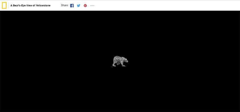 Xu hướng thiết kế website 2017 - Sự chuyển hướng đầy bất ngờ