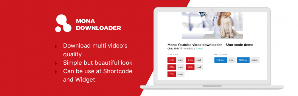 Mona Youtube Downloader - wordpress plugin
