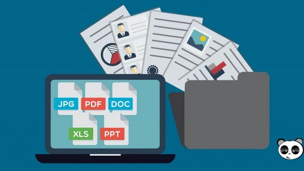 Phần mềm quản lý dữ liệu DMS cho doanh nghiệp